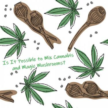 marijuana and mushrooms