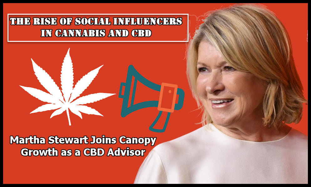 rise of social influencer martha stewart
