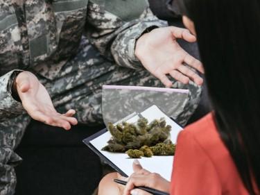 medical cannabis ptsd