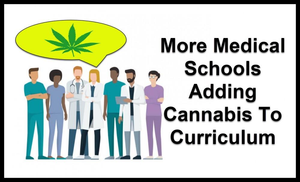 medical marijuana and med schools