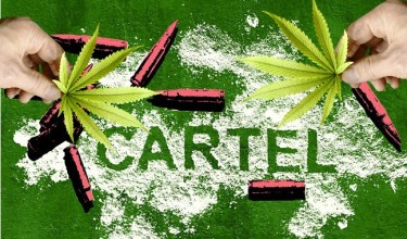 Mexican drug cartel weed legalization