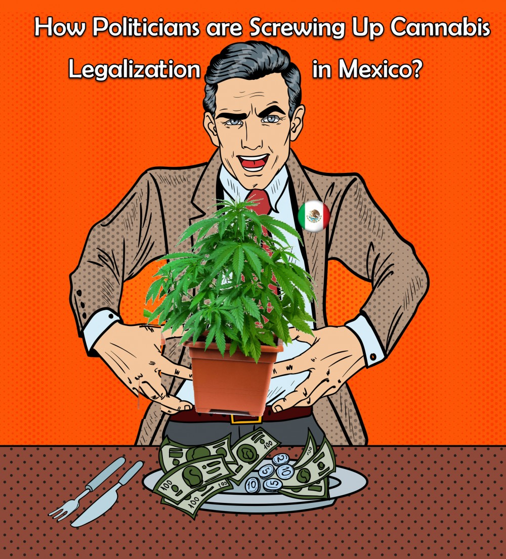 MEXICAN POLITICIANS AND LEGALIZING WEED
