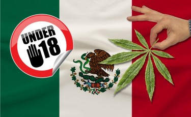 MEXICO LEGALIZES MARIJUANA FOR ANYONE OVER 18