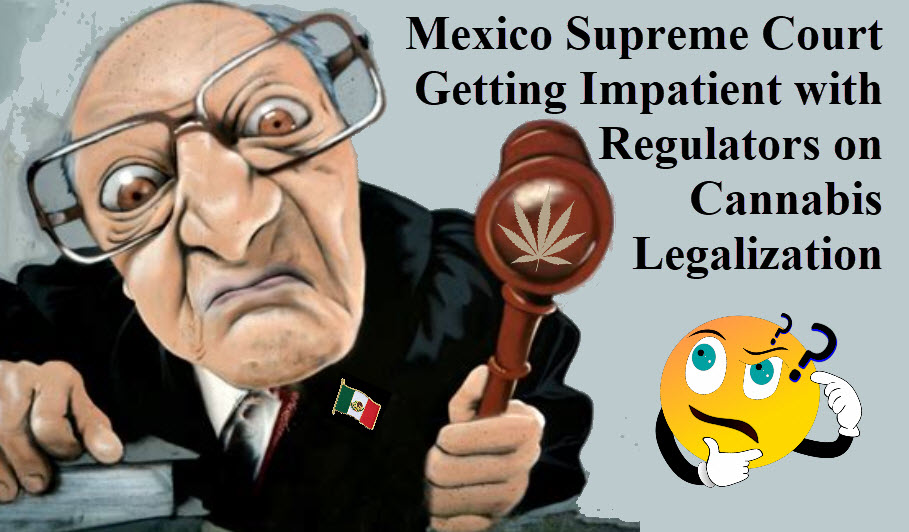 MEXICO COURTS GROW IMPATIENT ON LEGALIZATION