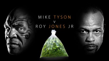Mike Tyson Roy Jones Jr fight and marijuana