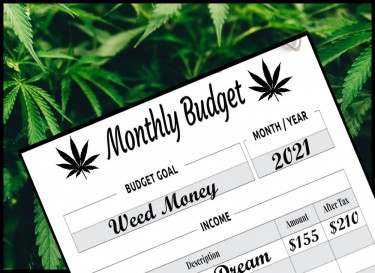 monthly marijuana budget