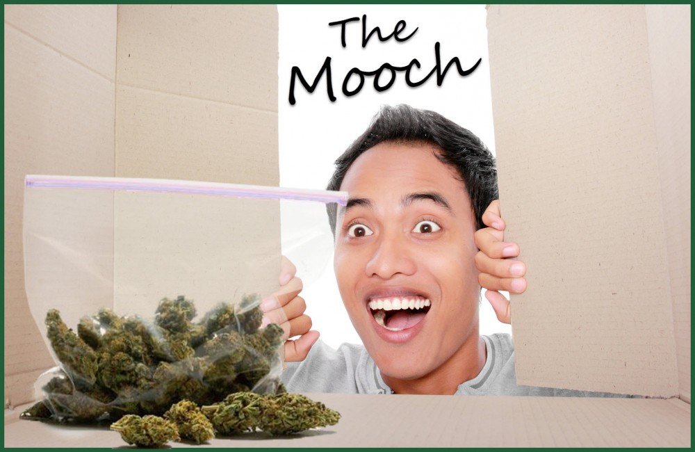 moochingweedoffpeople - How Do You Stop People from Mooching Your Weed?