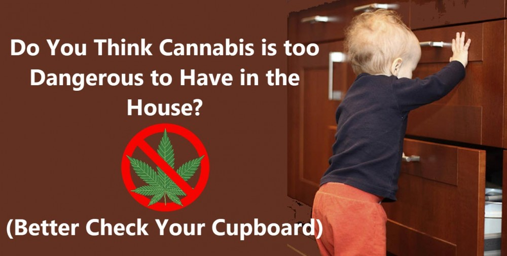 CANNABIS IN THE KITCHEN WITH KIDS