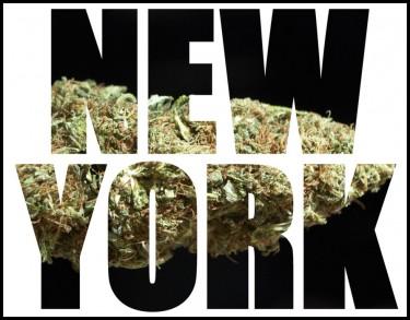 new york cannabis control board