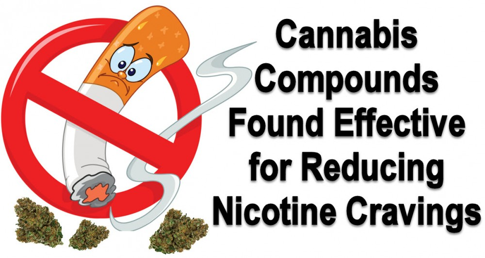 CANNABIS FOR NICOTINE CRAVINGS
