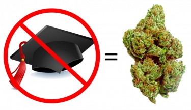NO COLLEGE DEGREE FOR THE MARIJUANA INDUSTRY