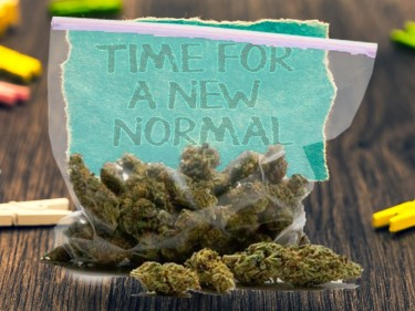 NORMALIZING CANNABIS USE