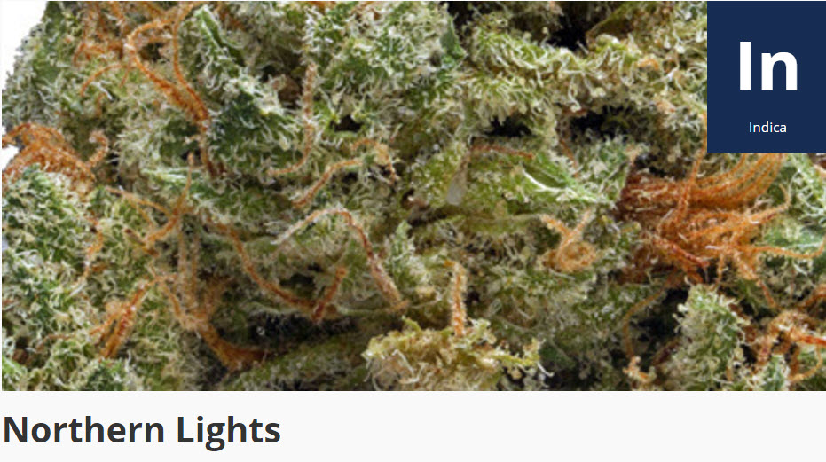Norther Lights cananbis strain