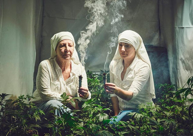 nuns for cannabis