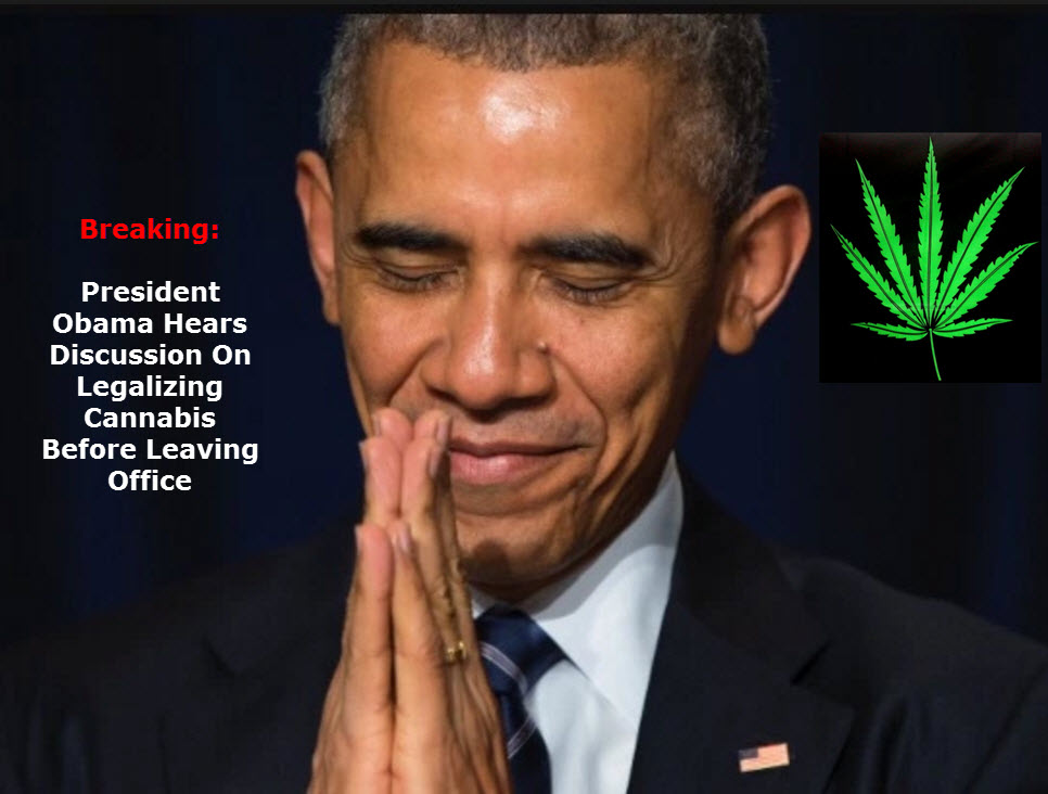 SHOULD OBAMA LEGALIZE WEED