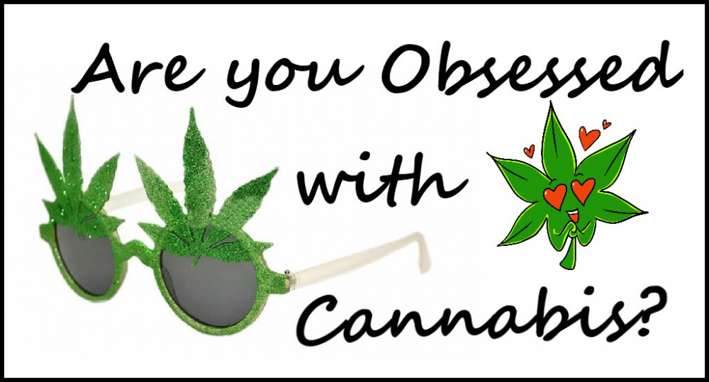 ARE YOU OBSESSED WITH CANNABIS