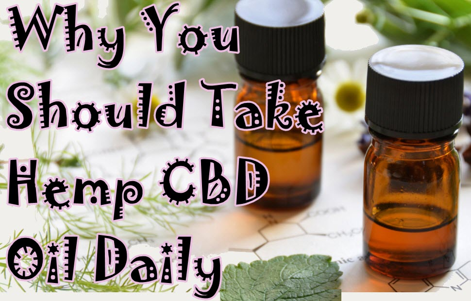 HEMP CBD OIL DAILY