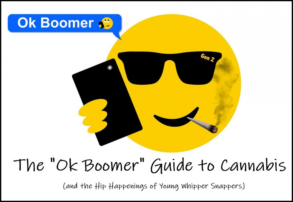 THE BABY BOOMERS GUIDE TO MARIJUANA