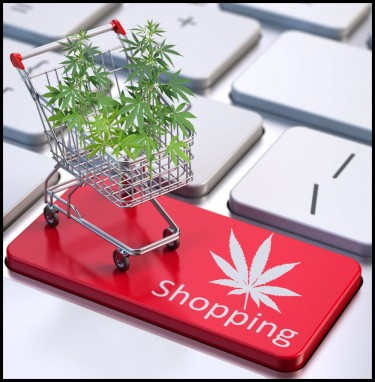 GUIDE TO CBD SHOPPING ONLINE
