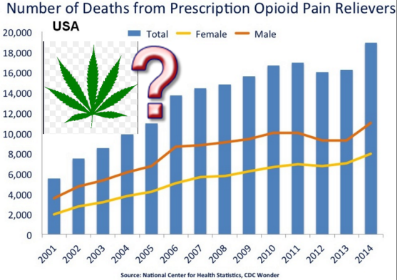 CANNABIS OPIATE ADDICTION TREATMENT NUMBERS