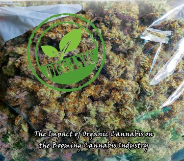 ORGANIC CANNABIS PRICES AND EFFECTS