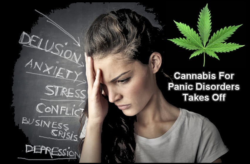 PANIC ATTACKS CANNABIS MARIJUANA
