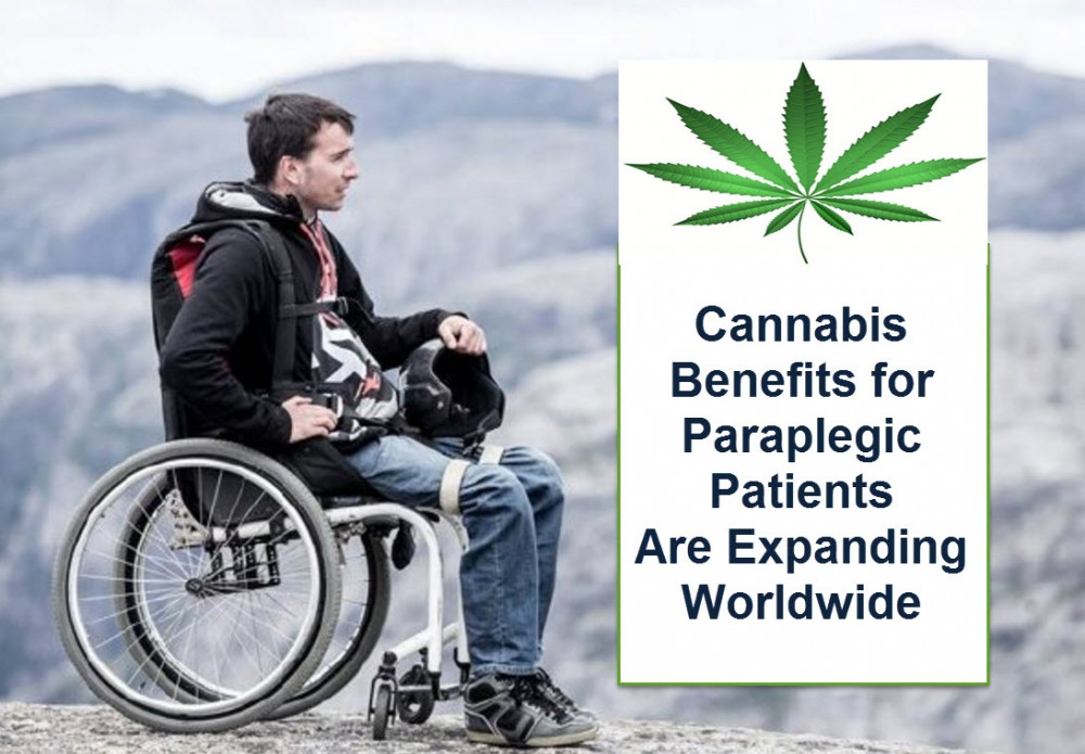 CANNABIS FOR PARAPLEGIC PATIENTS