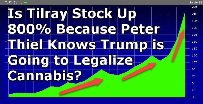 peter thiel on cannabis and trump