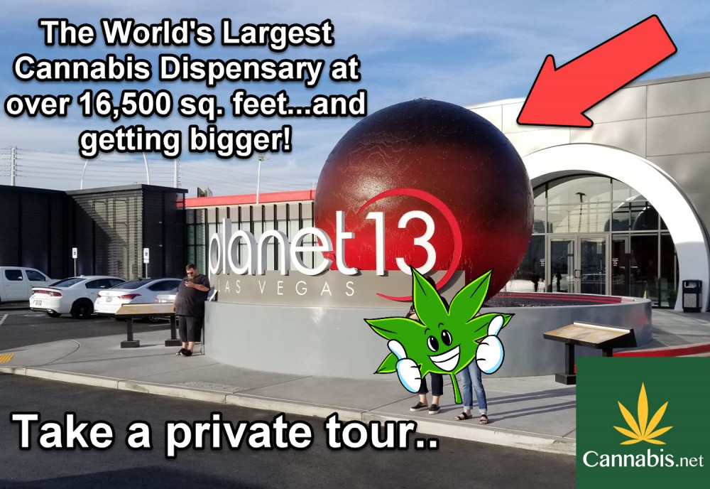 planet 13 las vegas review