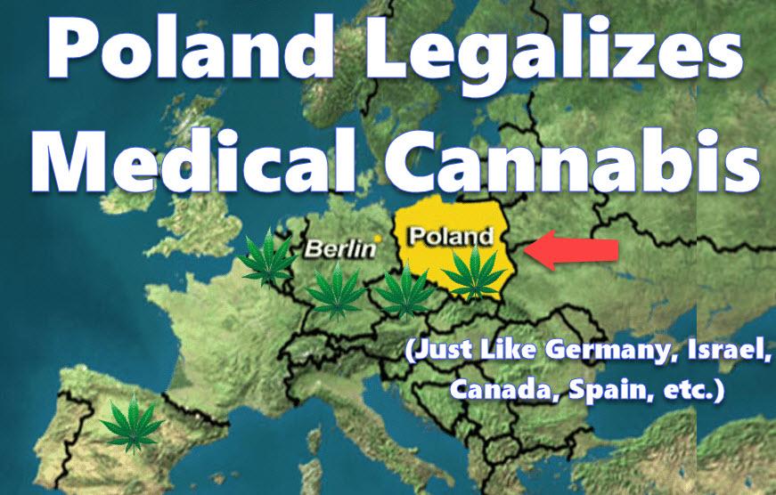 Poland medical cannabis