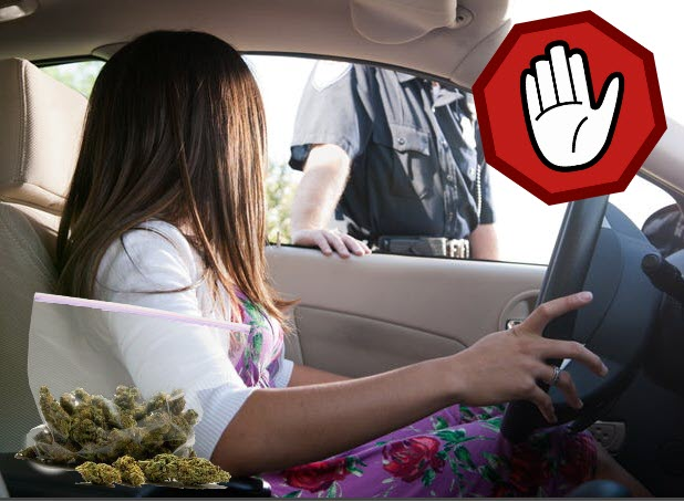policesmellweedincar - Can Police Really Smell Weed In Your Car?