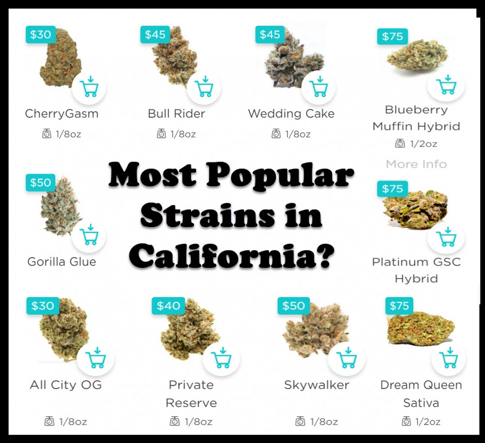 popular cannabis strains in california