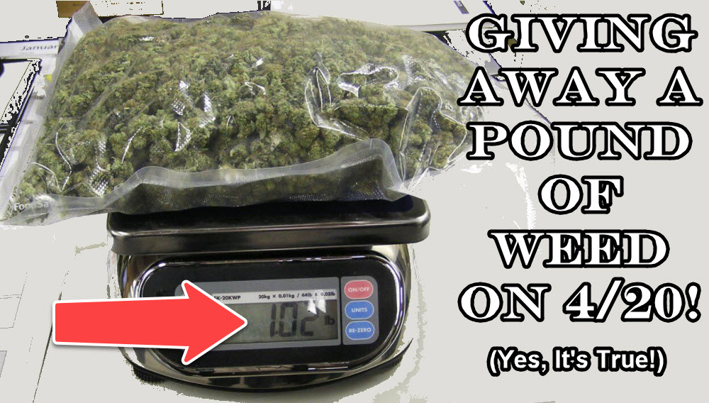 free pound of weed