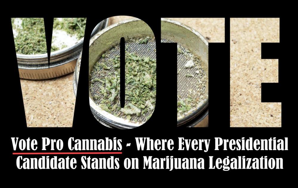 voting for marijuana legalization canadidates