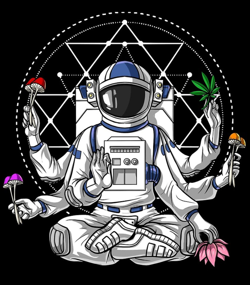 psychonauts in space