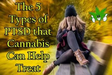 MARIJUANA FOR DIFFERENT TYPES OF PTSD