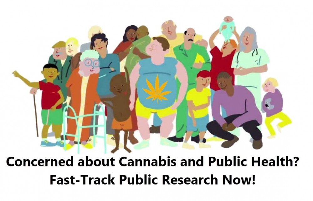public health cannabis