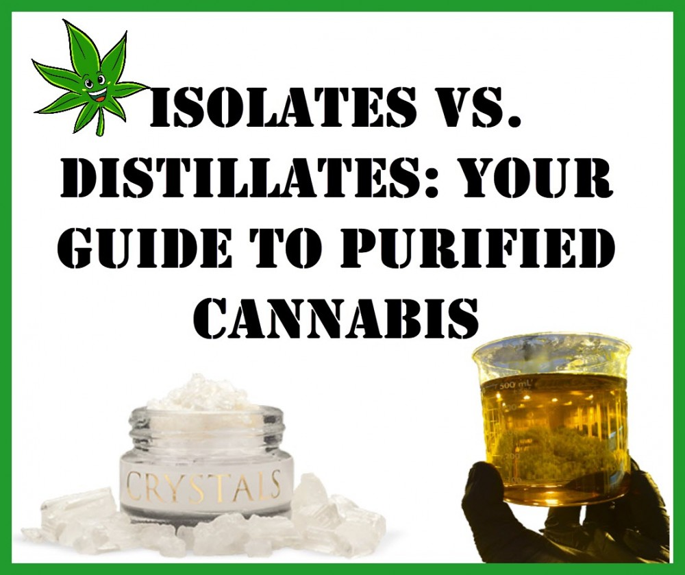 ISOLATE OR DISTILLATE CANNABIS