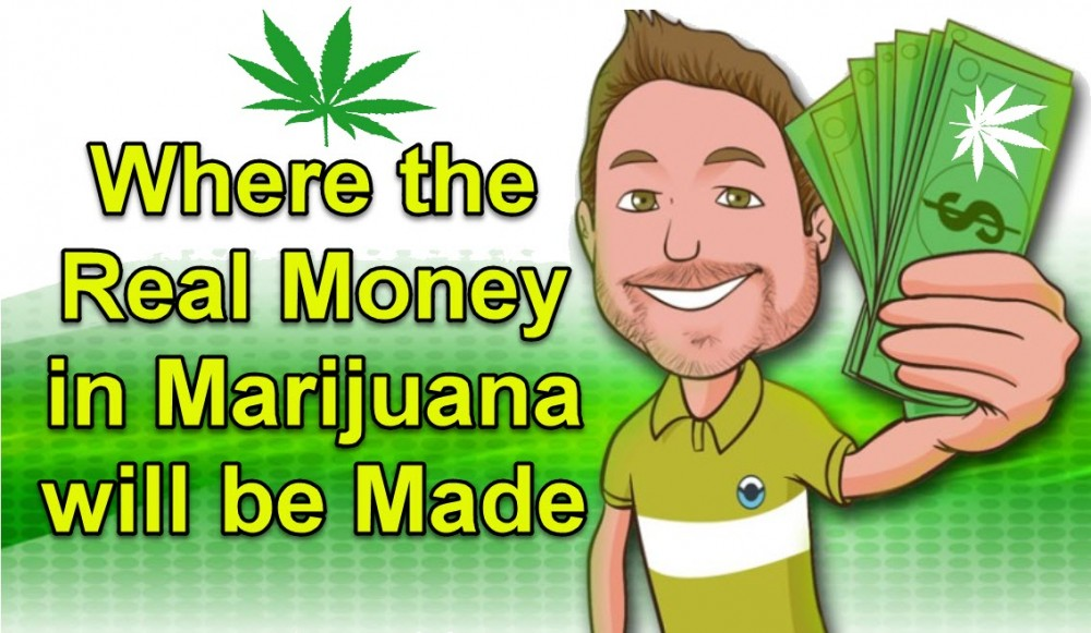 HOW CAN YOU MAKE MONEY IN CANNABIS