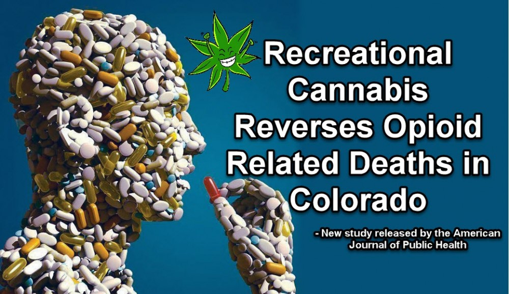REVERSE OPIATE TRENDS IN LEGAL MARIJUANA STATES