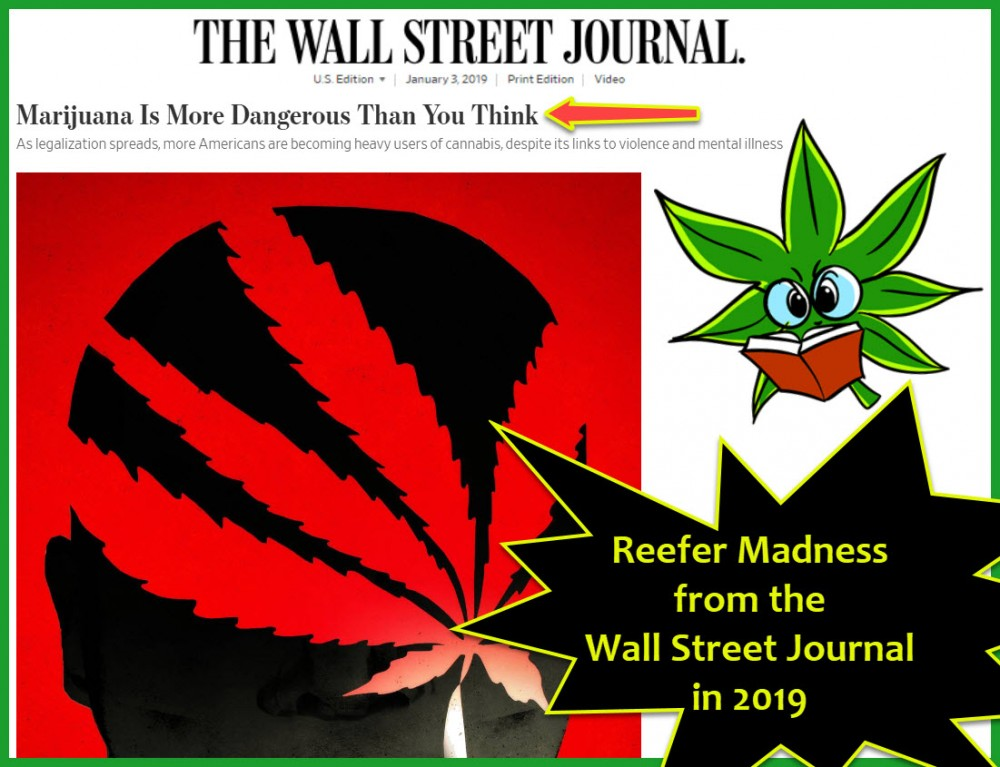 wsj on marijuana is dangerous