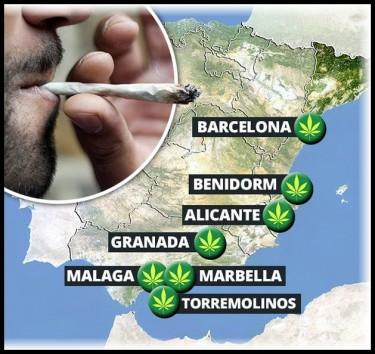 Spain's cannabis social clubs