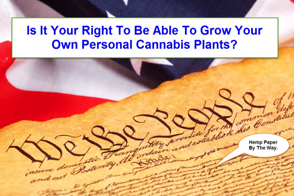 IT IS YOUR RIGHT TO GROW CANNABIS