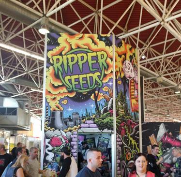 ripper seeds