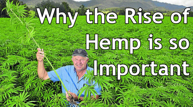 WHY IS HEMP IMPORTANT