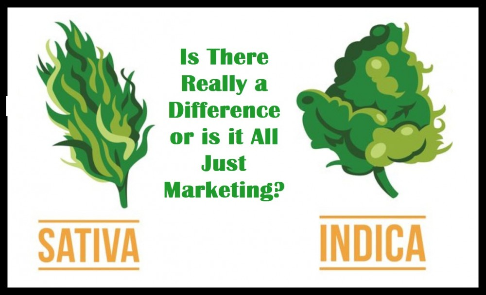 are sativa and indica the same