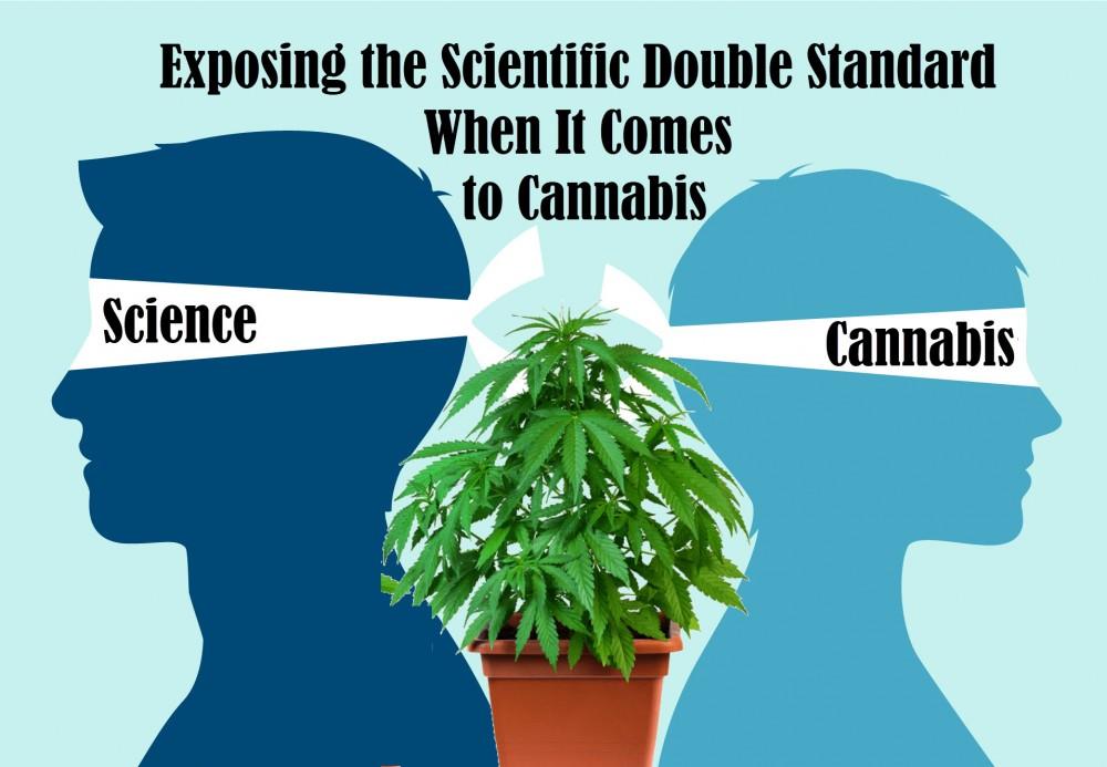 double standard cannabis