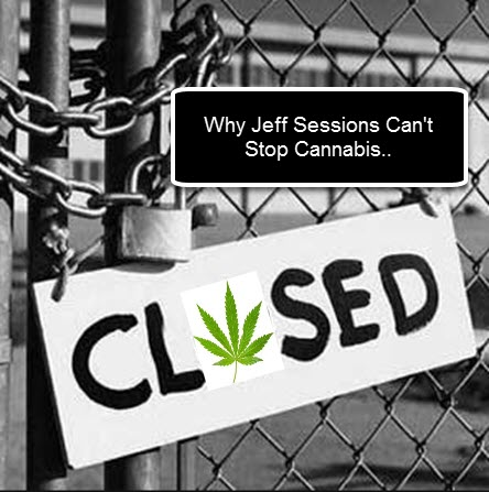 JEFF SESSIONS CANNABIS