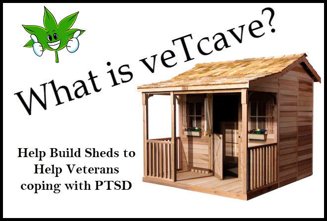 veterans building sheds for ptsd