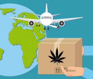 shipping weed around the world